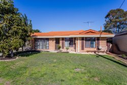 6 Cedar Ct, Spearwood WA 6163, Australia