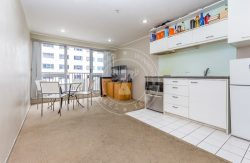 53 Cook Street, Auckland Central, Auckland, New Zealand